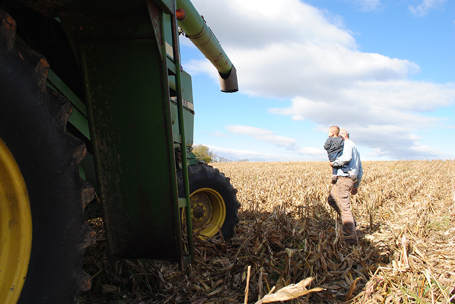 corn_harvest3
