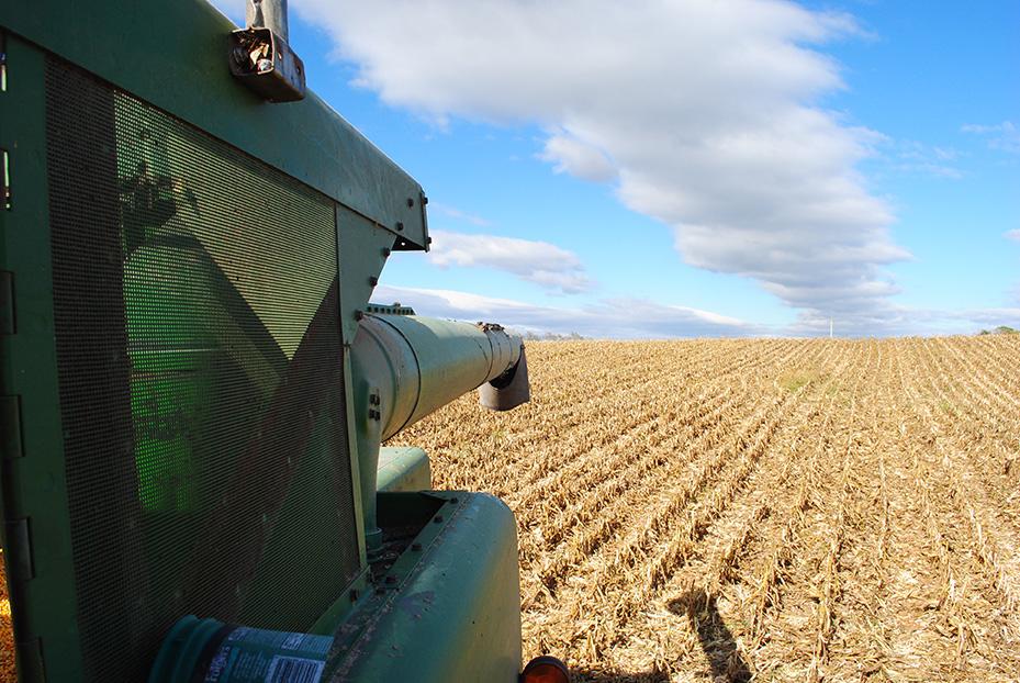 corn_harvest6